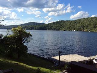 Lakefront House on Beautiful Canada Lake - Piseco vacation rentals