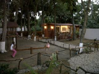 Valentina Cabin, Playa El Agua, Margarita Island. - Playa el Agua vacation rentals