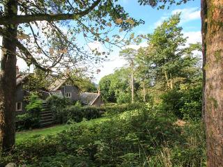 WOODPECKER LOFT, pet friendly, luxury holiday cottage, with a garden in East Anstey, Ref 8529 - Dulverton vacation rentals