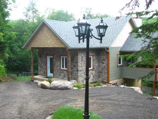 Beautiful 3 bedroom Saint Faustin Chalet with Satellite Or Cable TV - Saint Faustin vacation rentals
