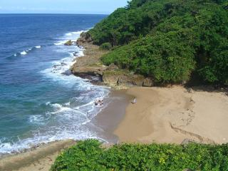 Caribbean best keep secret!!!  Monsa's cottage. - Quebradillas vacation rentals