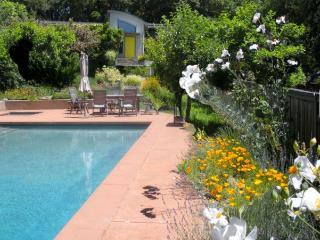 Sara's Oasis Elegant country home lrg heated pool - Sebastopol vacation rentals