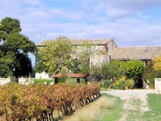 Domaine Savary, Languedoc Gite to rent on working vineyard (sleeps 5-6) (Ref: 55) - Meze vacation rentals