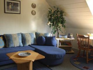 Vacation Apartment in Bad Kissingen - 377 sqft, central, comfortable (# 8935) - Bad Kissingen vacation rentals
