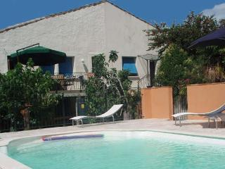 Laurens South France holidays rental pool 6 beds - Laurens vacation rentals