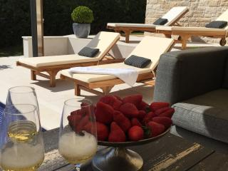Beautiful Villa with Internet Access and A/C - Tar-Vabriga vacation rentals