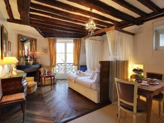 Ile Saint Louis love nest stay - Paris vacation rentals