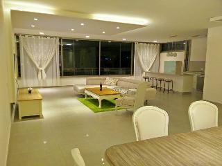 Orbanica Carmel luxurious Apartament - Haifa vacation rentals