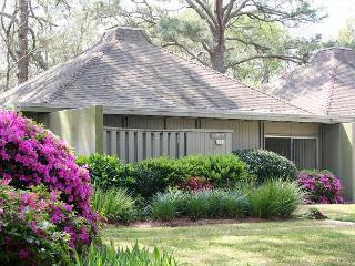 Cute Pet Friendly Villa with Golf & Lagoon Views! Walk to Beach! - Hilton Head vacation rentals