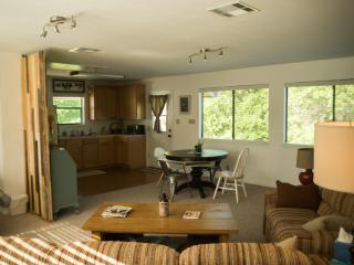 Nice 1 bedroom Apartment in Tomball with Internet Access - Tomball vacation rentals