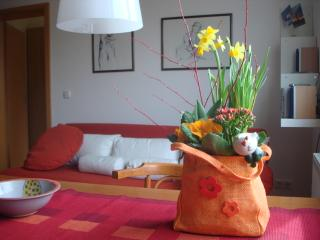Quiet and cosy flat., 10 Min. by Tram to medival c - Erfurt vacation rentals