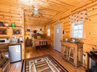 Quaint Cabin in National Park and Toccoa River - Blue Ridge vacation rentals