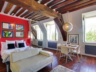 Luxury Large Studio rental, Ile Saint Louis views - Paris vacation rentals