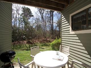 Charming Condo Close to the Walk/Bike Path - 5-Minute Drive to Brewster Bay - Brewster vacation rentals