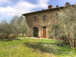 Stunning villa in in Chianti with pool, L'Olivo - Figline Valdarno vacation rentals
