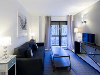Spacious and bright one bedroom apartment, overlooking Sabatini Gardens-303 - Madrid vacation rentals