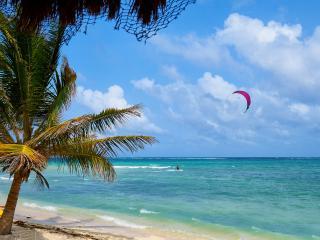 Peaceful Bungalow on Beach & Cenote in Tulum! - Tulum vacation rentals