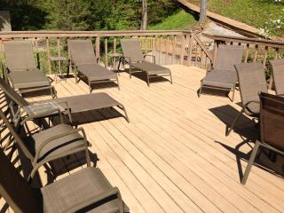 Beautiful 5BR 4 BA Lakefront Home sleeps 12 - Moneta vacation rentals
