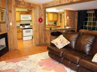 Watauga Lake 2 Min Away. Hot Tub, Fire Pit - Butler vacation rentals