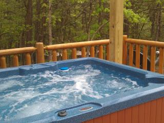 Near Cacapon State Park -- renovated Farm House - Great Cacapon vacation rentals