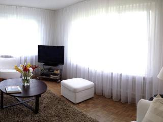 Sunny Condo with Internet Access and Long Term Rentals Allowed - Waedenswil vacation rentals