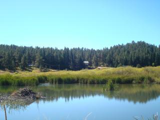 COLORADO MOUNTAIN RETREAT: PANORAMIC MTN VIEWS - Sedalia vacation rentals