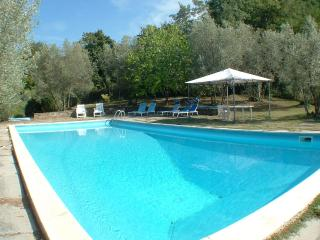 Villa Luce: Chianti countryside near Florence - San Polo in Chianti vacation rentals