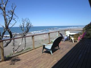Perfect House with Deck and Internet Access - Seal Rock vacation rentals
