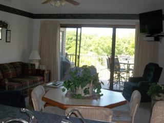 Fall Special for Great Condo on Horseshoe Bend - Lake Ozark vacation rentals