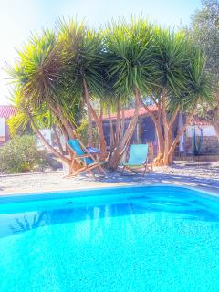 6 bedroom Farmhouse Barn with Internet Access in Sao Pedro do Corval - Sao Pedro do Corval vacation rentals