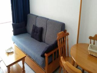 Apartment in Benidorm, Alicante 103111 - Benidorm vacation rentals