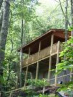 Fancy Gap Hideaway Golden Eagle - Fancy Gap vacation rentals