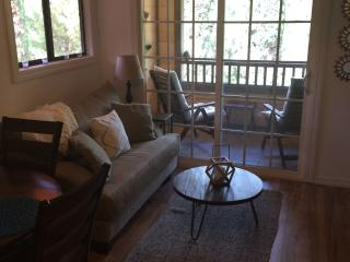 Cozy Condo with Internet Access and Parking - Bonita vacation rentals