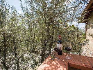 """Terre di Melazzano -""""Patrizia"""" - Greve in Chianti vacation rentals"""