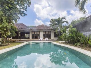 Spacious Villa with Internet Access and A/C - Nusa Dua vacation rentals