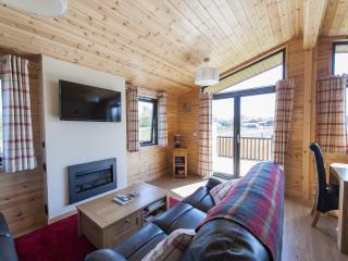 2 bedroom Lodge with Television in Newbridge - Newbridge vacation rentals
