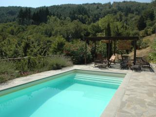 Luxurious Villa in National Park Setting - Casola in Lunigiana vacation rentals