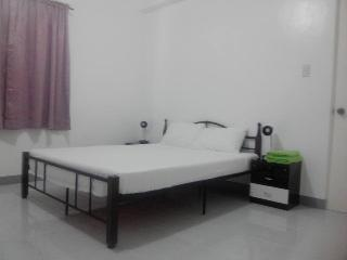 Nice Bed and Breakfast with Internet Access and A/C - Lingayen vacation rentals