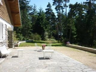 Large cottage - families or friends - Saint-Agreve vacation rentals