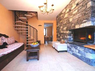 Spacious 3* duplex with fireplace - Lanslebourg Mont Cenis vacation rentals