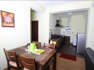Shumbuk Homes Serviced Apartments Studio Apartment - Gangtok vacation rentals