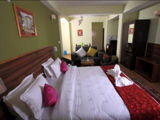 Shumbuk Homes Serviced Apartments Studio Apartment - Gangtok vacation rentals