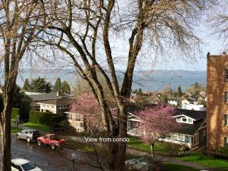 Puget Sound View 2bdr 2Ba Jacuzzi bath, best area - Tacoma vacation rentals
