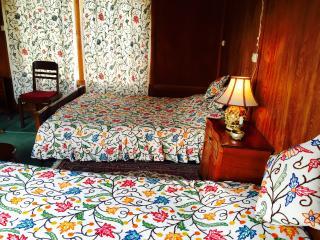 8 bedroom Boathouse with Internet Access in Srinagar - Srinagar vacation rentals