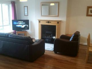 3 bed cosy apartment Dooradoyle Limerick - Limerick vacation rentals
