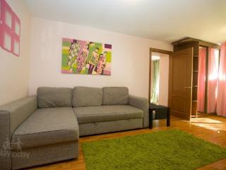 Nice 1 bedroom Condo in Moscow - Moscow vacation rentals
