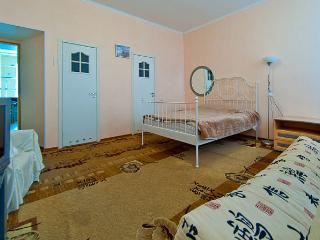 Apartment in Saint-Petersburg #2723 - Yekaterinburg vacation rentals