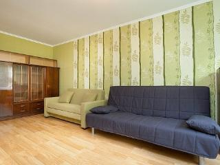 Cozy 1 bedroom Condo in Yekaterinburg - Yekaterinburg vacation rentals
