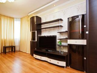 Apartment in Saint-Petersburg #3076 - Yekaterinburg vacation rentals