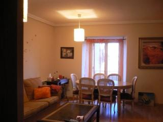 Nice Condo with Housekeeping Included and Television - Aranjuez vacation rentals